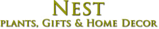 Nest Natchez MS Florist Virtual Tour of Shop